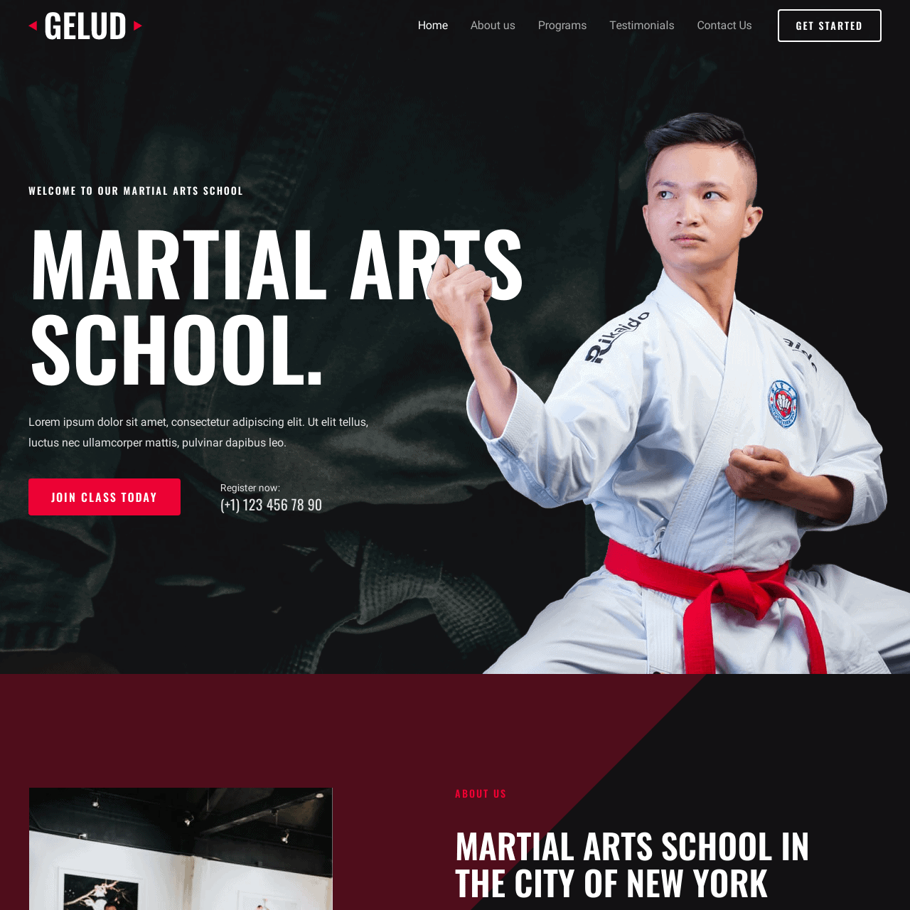 martial-arts-website-design